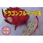 沖縄県産ドラゴンフルーツ(白) 小玉1個(@200前後)【発送7〜12月】