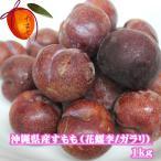 【発送5月下〜6月上旬】沖縄県産すもも1kg