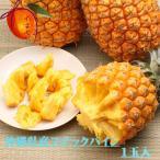 西表島産スナックパイン大玉、1個 (1.2〜1.5kg)【発送4〜9月】