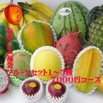 お任せフルーツ5種類  お楽しみ福袋7000円コース (フルーツセット 沖縄果物 マンゴー パパイヤ)