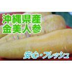 金美ニンジン 2kg 【発送 10月〜8月】 黄色いニンジン 島人参とは違います