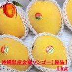 【優品】金蜜マンゴー 約1kg(2~4個) 新種稀少マンゴー はちみつのような深い味 【送料8〜9月上旬】