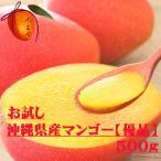 優品 沖縄県産 完熟マンゴー 1パック(約500g2〜3個)☆送料無料☆ えっ!格安!市場価格! マンゴーお試し? 発送6月下旬〜8月下旬