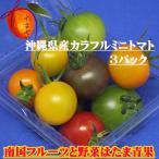 沖縄県産 カラフル ミニトマト 3パック(@約150g)【発送期間4月〜5月中旬】3色以上(赤・紫・黄色・緑・オレンジ)