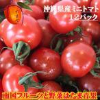 【送料無料】沖縄県産 カラフル ミニトマト 12パックセット(@約150g)【発送期間4月〜5月中旬】3色以上(赤・紫・黄色・緑・オレンジ)