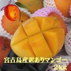 訳あり 宮古島産完熟アップルマンゴー 約2kg 送料無料 発送6月下旬〜8月上旬