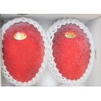 最高級 宮古島産完熟マンゴー (約1kg)【送料無料】 【自社農園生産】 【発送7月上〜8月上旬】