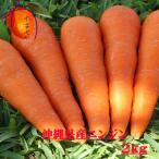 沖縄県産ニンジン 2kg 【発送 1月〜8月】 島人参とは違います