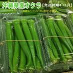沖縄県産オクラ 500g  【発送4〜11月】沖縄の濃い野菜