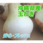 沖縄県産  たまねぎ  2kg 【発送 1月〜3月】
