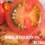 【わけあり】沖縄県産 トマト 約4kg【発送12月〜5月】