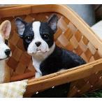 フレンチブルドックのエース チアフルフレンズ フレンチブルドック 犬 いぬ イヌ dog ドッグ ドック 置物 小物 オブジェ