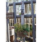 ショッピングプランター アンティーク風 アイアン蛇口プランター ブラウン ホワイト プランター アイアン ガーデン雑貨