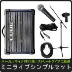 簡易PAセット/出力50W Roland Cube Street EX(路上ライブなどに最適なマイク1本のセット)