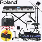Roland 電子キーボード ゴーピアノ(GO PIANO) ストリートライブセット