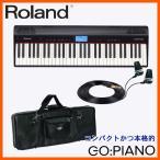 ショッピングキーボード Roland 61鍵キーボード GO PIANO (ゴーピアノ) モニターイヤフォン&上質なケース付きセット