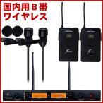 ワイヤレスマイク ピンマイク2本セット 日本仕様B帯ワイヤレス 送受信機セット(サウンドピュア 8022e)会議・講義・トークイベントに