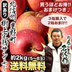 SALE 予約販売 北信州産 豊野町 ワケあり 樹上 完熟 サンふじ リンゴ 約2kg 5〜8玉 箱購入で1kgおまけ 箱購入で2箱おまけ 送料無料