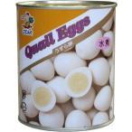天狗)うずら卵 水煮缶(天狗)2号缶【チューボー用品館】 ポイント消化