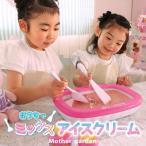 アイスクリームメーカー うさもも 手作り アイスメーカー おうちで 自宅で 簡単 安心 アイスクリーム作り 手作りアイス アイスおもちゃ