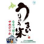 雨竜米 うりゅう米 ななつぼし 無洗米 5kg (精米) 北海道雨竜町産