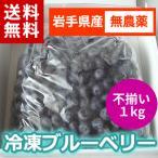 冷凍ブルーベリー1kg(サイズ不揃い品)/岩手県遠野産、農薬不使用、加工用