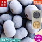 冷凍ブルーベリー1kg(2Lサイズ)/岩手県遠野産、無農薬栽培