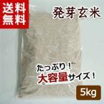 発芽玄米『遠野の便り』(業務用5kg)