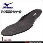 安全靴 ミズノ mizuno インソール C1GU160009 中敷き