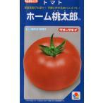 トマト(ホーム桃太郎)