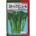 茎ブロッコリー(スティックセニョール)