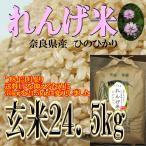 れんげ 10割有機米 殺菌殺虫剤不使用 ひのひかり 24.5kg 玄米 奈良県産 令和元年産 ヒノヒカリ みどりちゃんちのお米