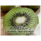 農薬不使用(無農薬)大分県産 キウイフルーツ 約2キロ
