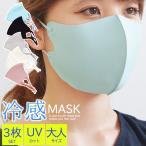 マスク 冷感 3枚セット 大人 洗える 夏のマスク 夏用 冷感素材 小さめ 大人用 メンズ レディース ft-mask11m メール便送料無料