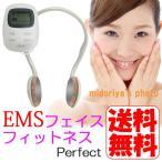 [訳ありB品] EMS 顔 美顔器 フェイス フィットネス 顔 専用 EMS フェイスフィットネスパーフェクト MCE-3725 (mc-3751) 送料無料