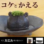 モスモスシリーズ 作家 真山茜氏【モスカエル・受け皿セット】