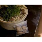盆栽(小)の肥料 6か月分