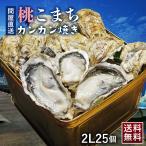 殻付き牡蠣 桃こまち カンカン焼き 2Lサイズ 25個入り (カキナイフ 片手用軍手 半缶 付き ) 牡蠣 浜焼き