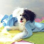 ペットタオル ペット用タオル 超吸収タオル 吸水性タオル 瞬間吸収 速乾 犬 猫 タオルドライ 体拭き 乾燥タオル ボディタオル 犬 猫 イヌ ネコ