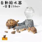 ペット用 自動給水器 250ml お水 ウォーターディッシュ 岩デザイン 爬虫類用 亀用 トカゲ用 犬 猫 イヌ いぬ ネコ ねこ