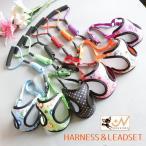 ハーネスリードセット ハーネス&リード 胴輪 リーシュ ベストタイプ メッシュ 犬用 イヌ用 ドッグ 小型犬 DOG ドット柄 水玉模様 可愛い お散