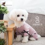 ペット用 犬猫兼用 洋服 カバーオール つなぎ 薄手 半袖 プルオーバー リボン ボーダー柄 おしゃれ 可愛い かわいい 超小型犬 小型犬 ドッグウエ