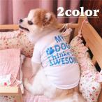 ペットウェア Tシャツ 犬 猫 イヌ ネコ ドッグウェア キャットウェア 小型犬 ペット用品 袖あり プリント入り 文字入り 足あと プルオーバー 単