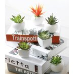 マグネット 多肉植物 サボテン 造花 インテリア リビング ガーデニング アートフラワー 装飾 飾り ギフト 誕生日 プレゼント