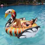 浮き輪 うきわ 浮輪 ウキワ フロートマット フロートボート ビーチフロート ラウンジマット エアーマット 大きい ビッグサイズ 白鳥 スワン 大人用