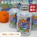 三ヶ日みかんジュース 280g入り×24缶入り×2箱