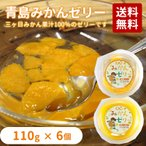 青島みかんゼリー 118g×6個入り 果汁100%ゼリー×3個・果肉ゼリー×3個 送料無料
