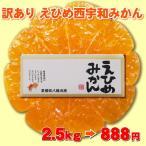 えひめ みかん⇒赤字覚悟の798円たっぷり2.5kg!大玉