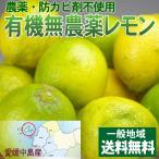 愛媛産 中島無農薬有機栽培レモン4kg【送料無料】傷あり・不揃い