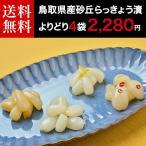らっきょう 鳥取県産 国産 砂丘らっきょう漬け よりどり4袋 ラッキョウ 送料無料